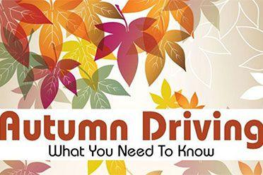 Autumn driving infographic